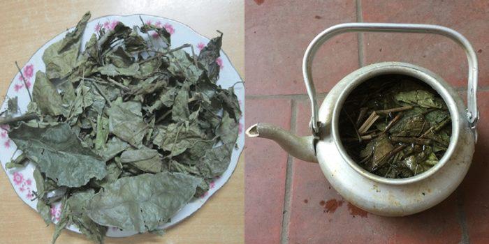 Cách nhận biết cây xạ đen khô thông qua mùi vị.