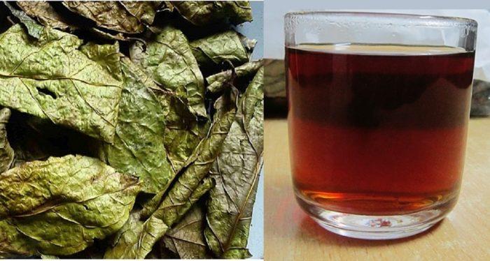 Bệnh nhân bị bệnh gan, ung thư nên dùng xạ đen khô sắc nước uống mỗi ngày.