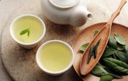 Uống trà xanh tăng cường hệ miễn dịch cho cơ thể