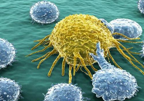 Thức ăn cho tế bào ung thư là gì?