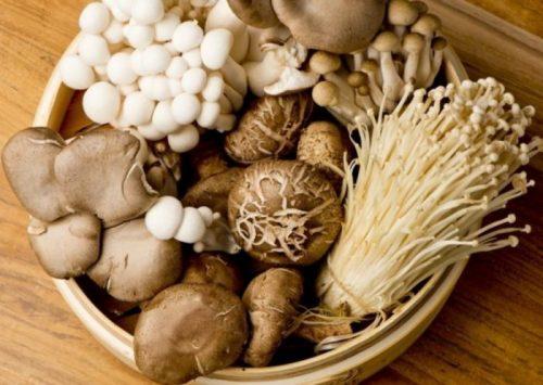 Nấm là thực phẩm rất tốt cho người bị ung thư dạ dày