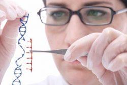 Bệnh ung thư có di truyền không ?