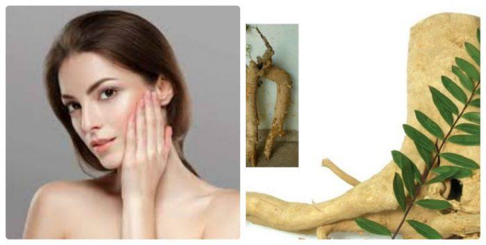 Cây mật nhân có tác dụng dưỡng da tốt