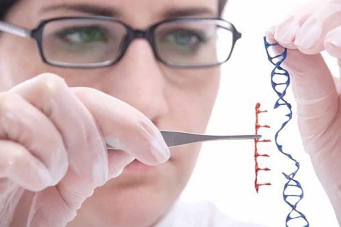 Nghiên cứu bệnh ung thư não có di truyền không