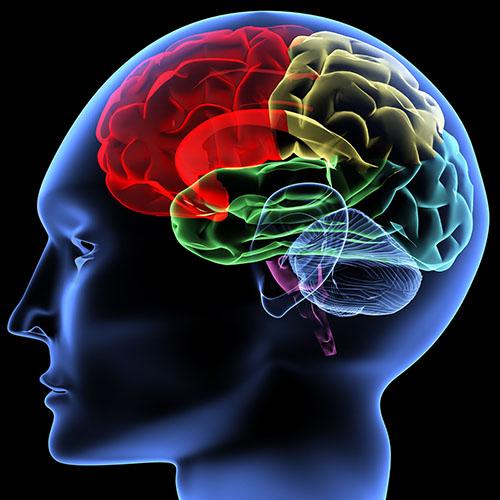 Phân tích bệnh ung thư não có di truyền không