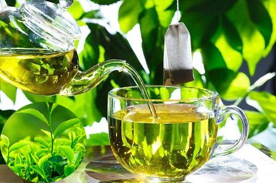 Sắc nước uống chè xanh tươi hỗ trợ điều trị nhiều bệnh lý hiệu quả