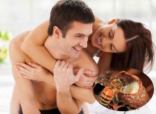 Sữa ong chúa giúp tăng cường sinh lý ở cả nam và nữ