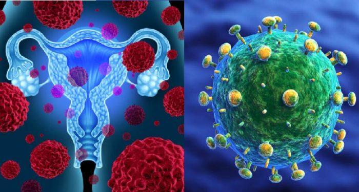 Virus HPV là nguyên nhân gây ung thư cổ tử cung hàng đầu