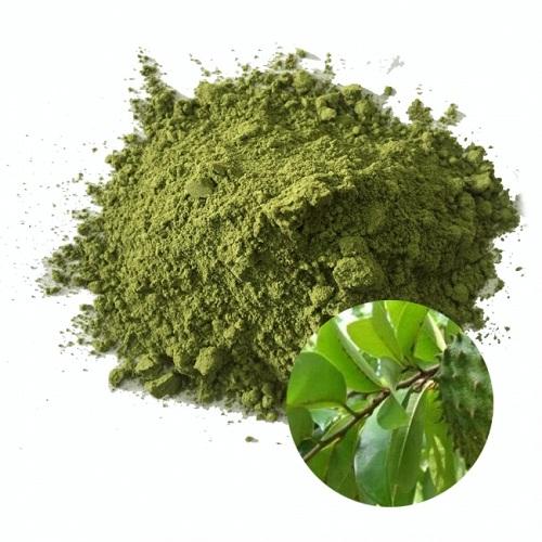 Bột lá cây mãng cầu có tác dụng gì và cách sử dụng bột lá cây mãng cầu