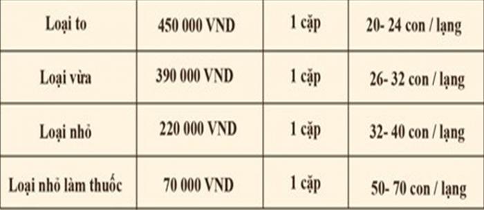 Bảng giá của một đại lý bán cá ngựa khô