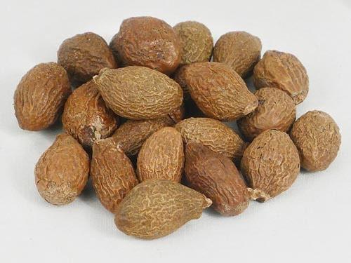 Tác dụng hạt đười ươi là gì và cách dùng hạt đười ươi chữa bệnh