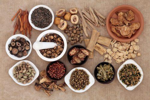 Bài thuốc với cây cối xay