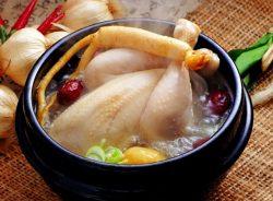 Sâm hầm gà làm món ăn bổ dưỡng với chị em sau sinh