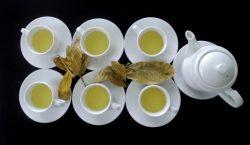Nước trà dung được sử dụng trọng điều trị các bệnh về đường tiêu hóa
