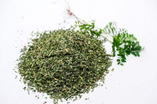 Diệp hạ châu dùng tươi hay dùng khô đều bảo toàn được dược tính.