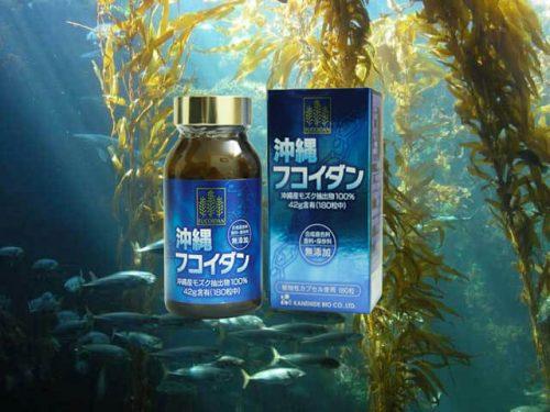 Món quà sức khỏe đến từ đại dương xanh