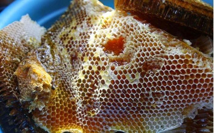 Hình ảnh mật ong rừng nguyên chất