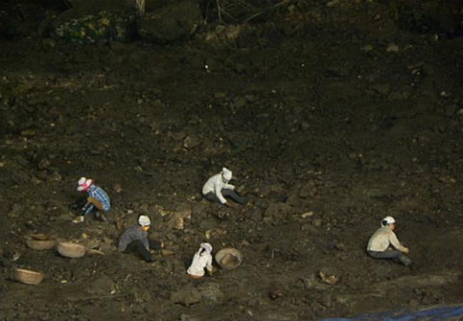 Nông dân thu hoạch phân dơi ở trong hang