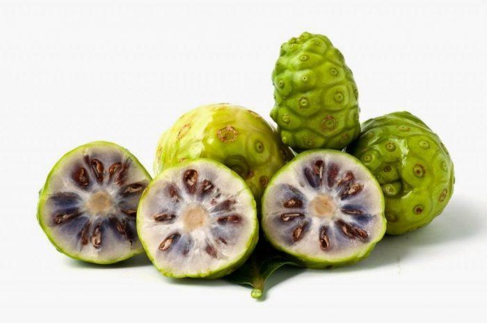 Trái nhàu trái cây phổ biến ở miền Nam
