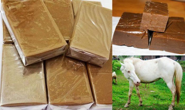 Tác dụng của cao ngựa bạch với sức khỏe và cách dùng cao ngựa bạch