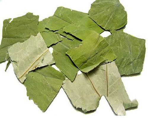Tác dụng của lá sen khô và cách dùng lá sen khô phòng và điều trị bệnh