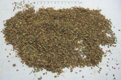 Quả cây giần sàng sau khi phơi khô có tác dụng chữa bệnh phụ khoa và nam khoa