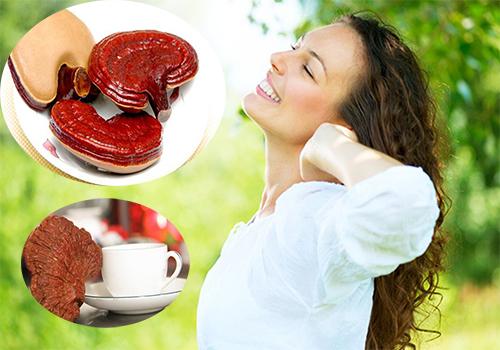 Uống nấm linh chi mỗi ngày sẽ có tác dụng rất tốt đối với sức khỏe của phụ nữ
