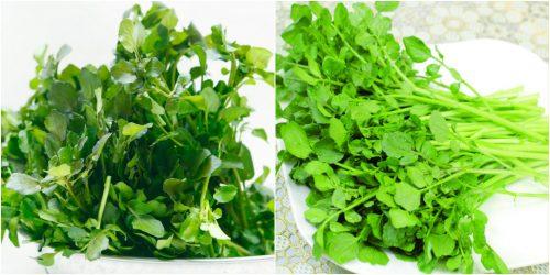 Thành phần dược chất của cây cải xoong có tác dụng gì