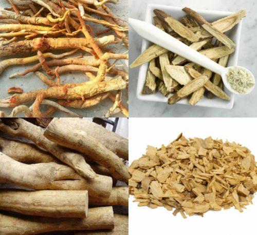 Cây bá bệnh được sử dụng dưới dạng khô, thái mỏng hoặc nghiền thành dạng bột