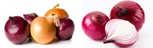 Hành tây tím có chứa nhiều chất chống oxy hóa hơn hành tây trắng