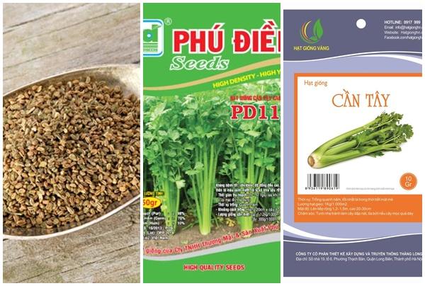 Hạt rau cần tây bán trên thị trường.