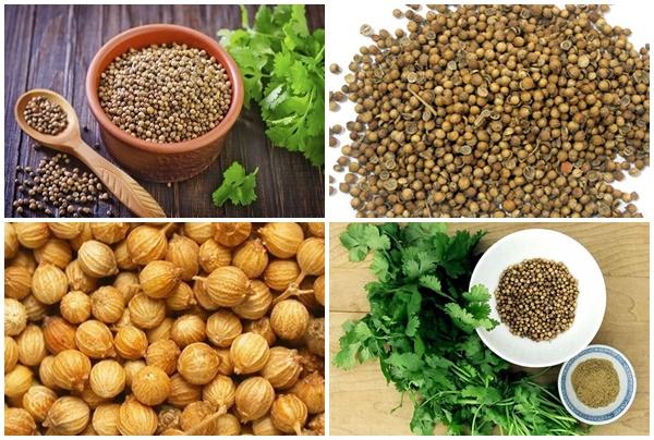 Hạt rau mùi có công dụng chữa bệnh tuyệt vời.