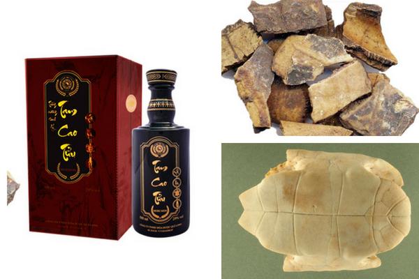 Rượu cao quy bản được dùng nhiều để chữa bệnh di tinh