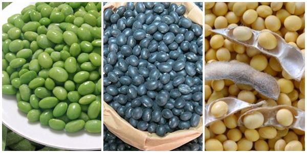 Các loại đậu tương phổ biến trên thị trường.
