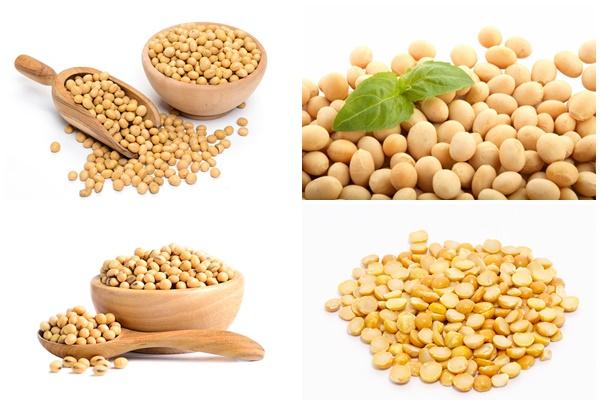 Hình ảnh hạt đậu tương khô.