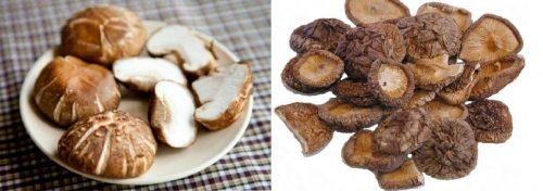 Tác dụng của nấm hương trong điều trị ung thư, bảo vệ gan, cải thiện miễn dịch