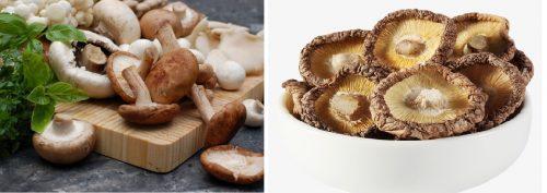 Nấm hương tươi (trái) và khô (phải)