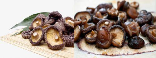Nấm hương mang lại vô vàn lợi ích tuyệt vời cho sức khỏe