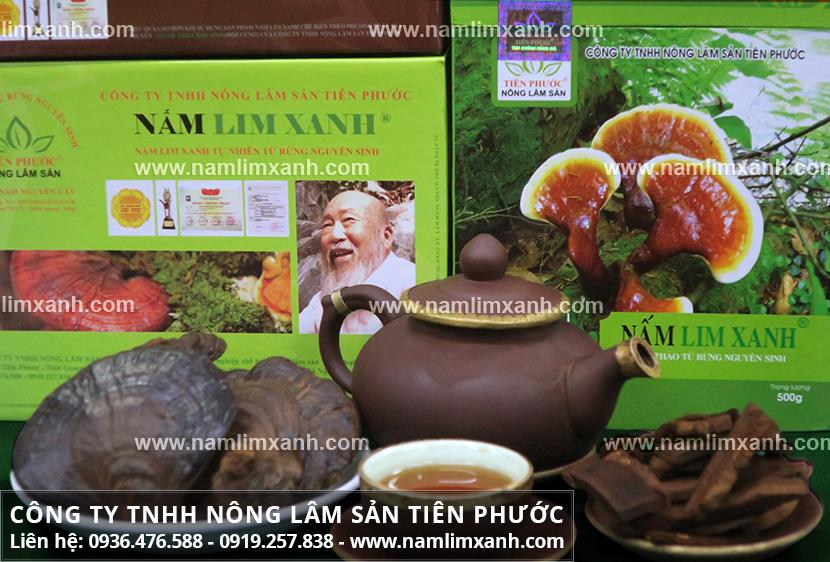 Cách làm nấm lim xanh rừng và cách làm trà cây nấm lim xanh tự nhiên