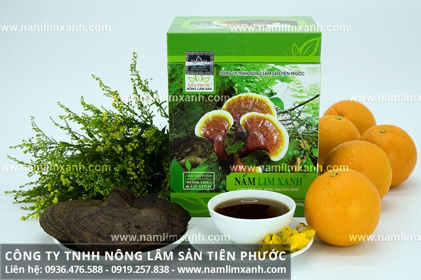 Giá nấm lim xanh Công ty Tiên Phước và giá thành cây nấm lim tự nhiên