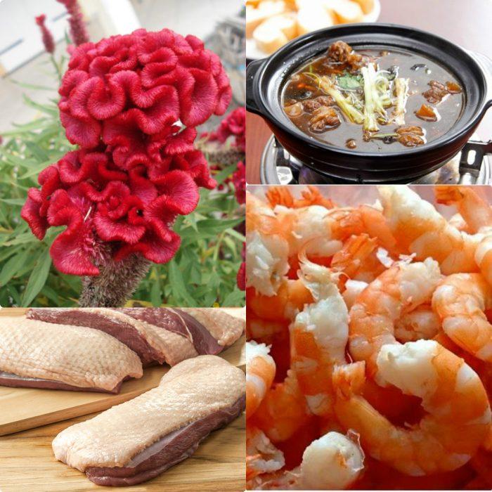 Chế biến kê quan hoa thành các món ăn bổ dưỡng