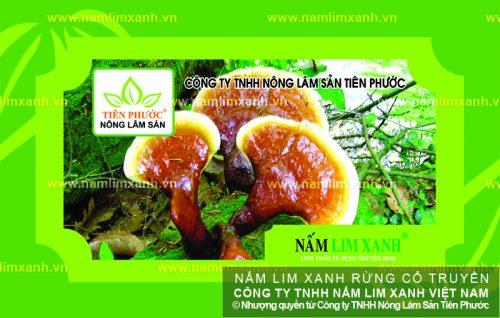 Giá nấm lim xanh của Công ty TNHH Nông lâm sản Tiên Phước được niêm yết trên thị trường