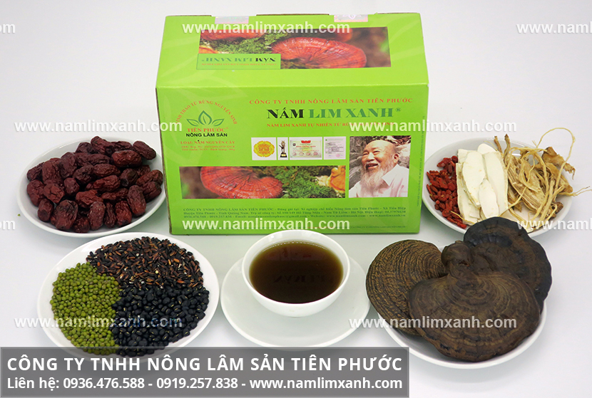 Bán nấm lim xanh tại Đà Nẵng có ở đâu và nơi mua bán nấm lim ở Đà Nẵng