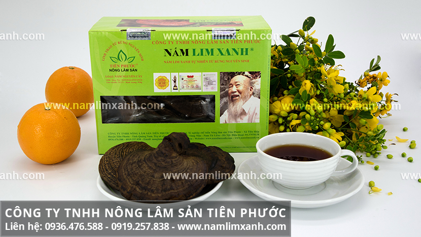 Bán nấm lim xanh Tiên Phước Quảng Nam và nơi bán nấm lim xanh ở TP.HCM