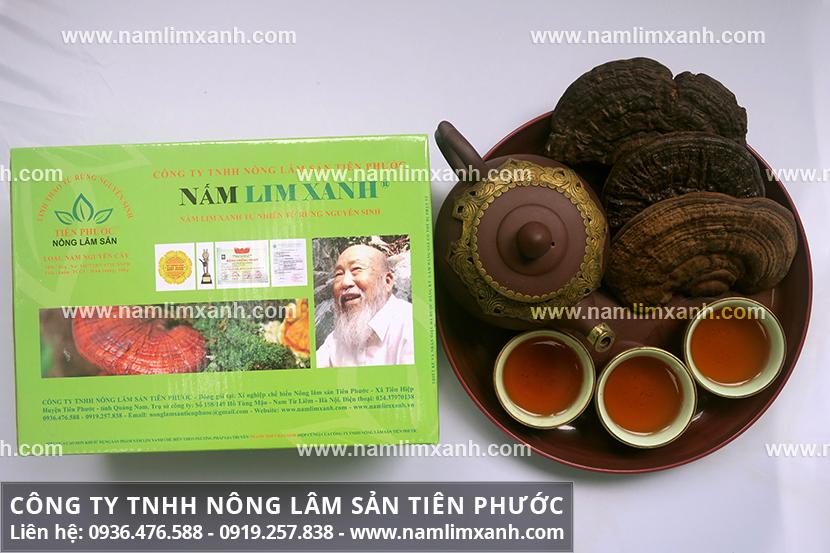 Cách dùng nấm lim rừng với cách dùng nấm cây lim xanh đúng liều lượng