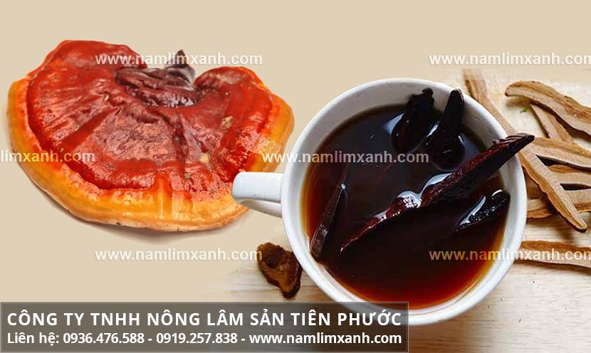 Cách nấu nấm lim xanh Quảng Nam và cách sử dụng nấm lim hiệu quả