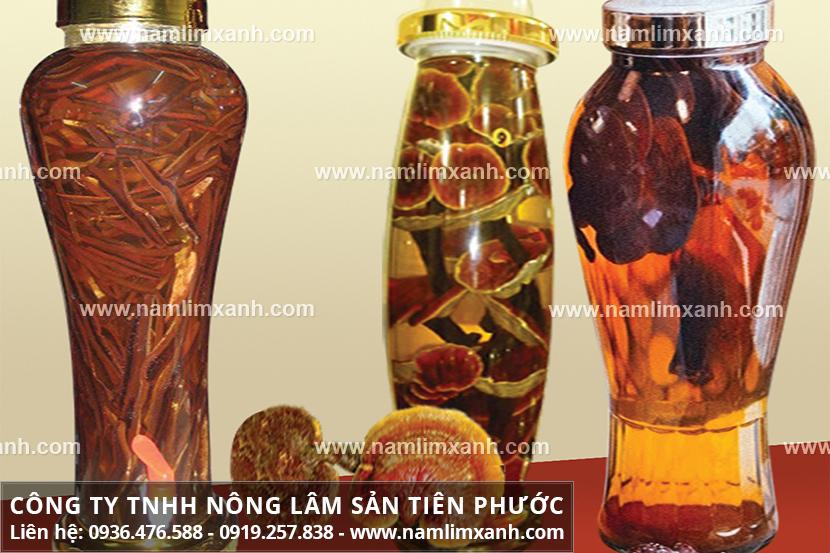 Cách ngâm rượu nấm lim rừng phát huy công dụng trị bệnh của nấm lim