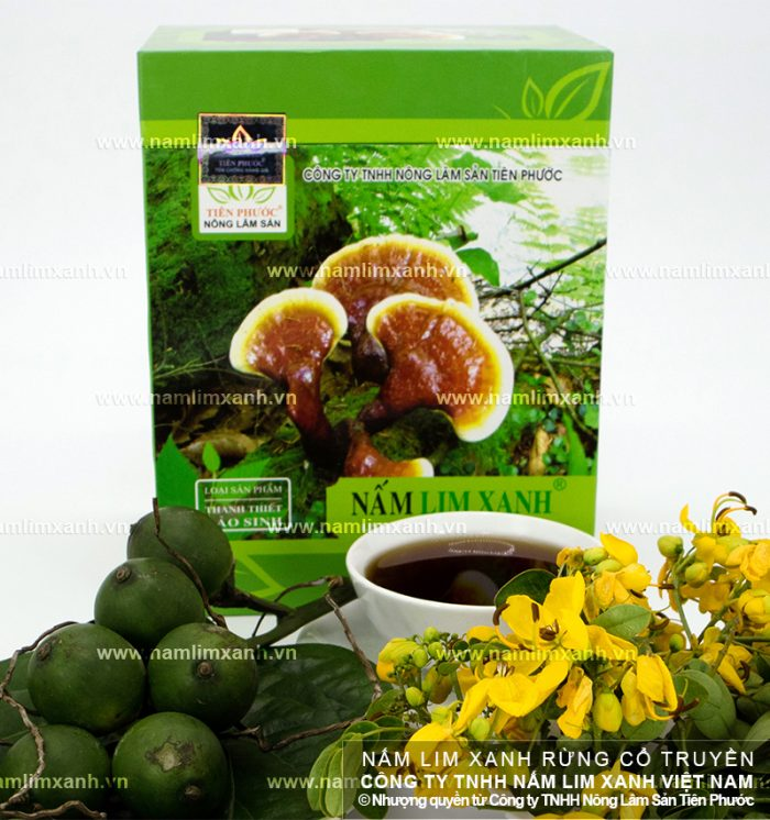 Sản phẩm nấm lim xanh đã qua chế biến có tác dụng dược tính cao.