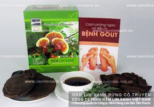 Tác dụng của nấm lim xanh trị bệnh gout được nhiều người quan tâm