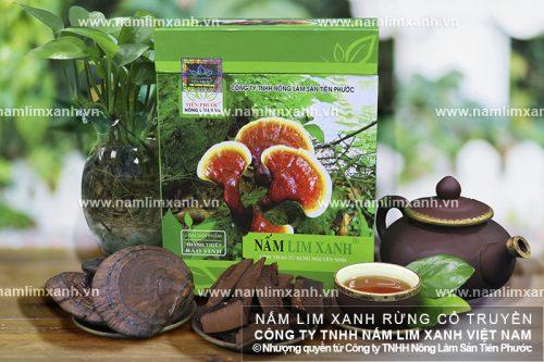 Công dụng nấm lim xanh Quảng Nam chữa bệnh gì được nhiều người quan tâm